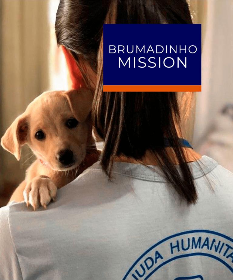 Brumadinho Mission