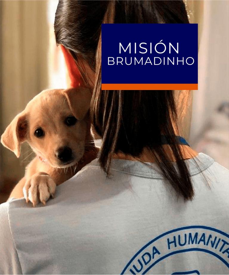 Misión Brumadinho